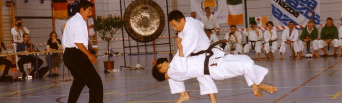 International Japan Karate Association